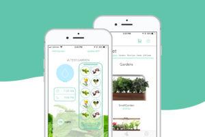Consumer Apps - ēdn