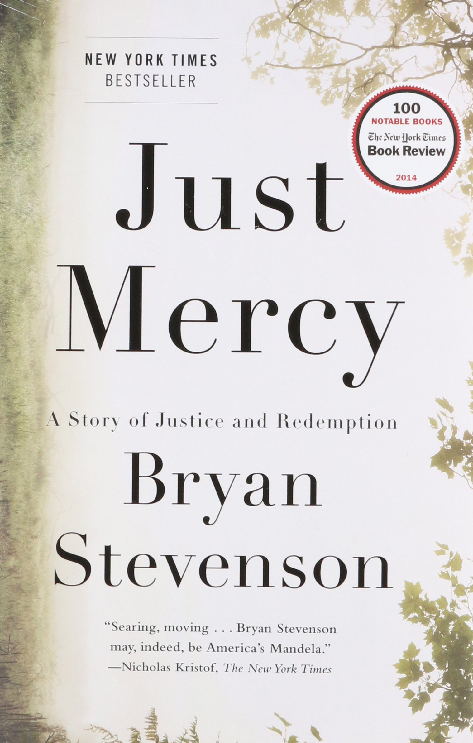 Eight Great Books: Just Mercy